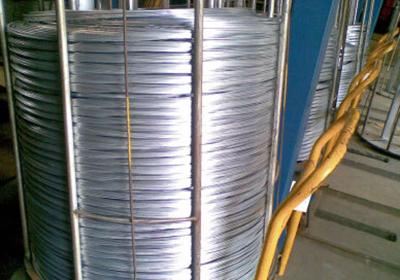 Hot Galvanized Steel Wire